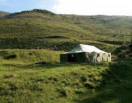 MEDINA 1-11 julio: Nos vamos de acampada (FOTOS)