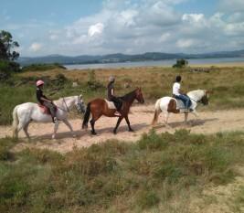 LAREDO 21-31 julio: Al trote en los caballos (FOTOS y VÍDEOS)