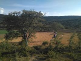 CORNEJO 1-6 septiembre: Tirolina y tiro con arco (FOTOS y VÍDEOS)